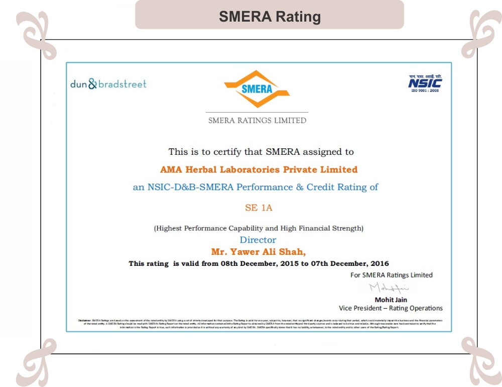 NSIC-D&B SMERA RATING